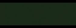 TrueStory logo