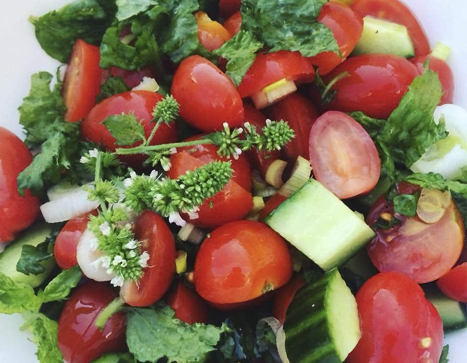 Vegetarisk workshop hos SimpleGreens
