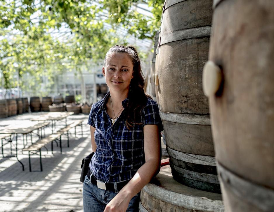 Oplev en dansk vingård hos Nordlund